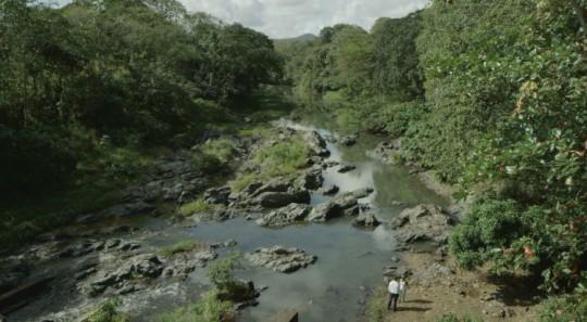 COCOTE: gros plan sur une découverte dominicaine sélectionnée à Locarno